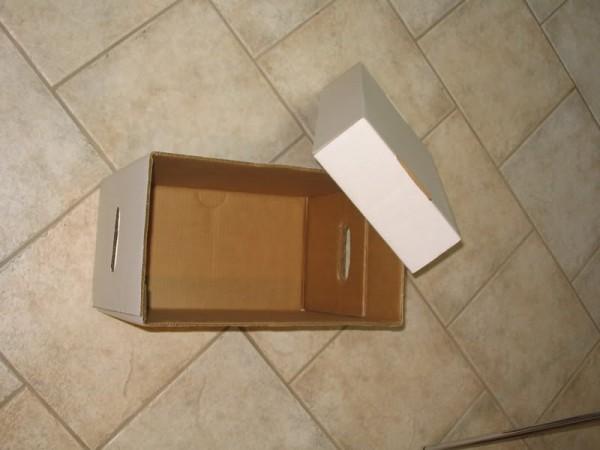Empty Comic Box