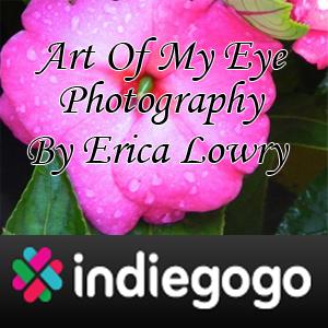 Art Of My Eye Photography IndieGoGo.com