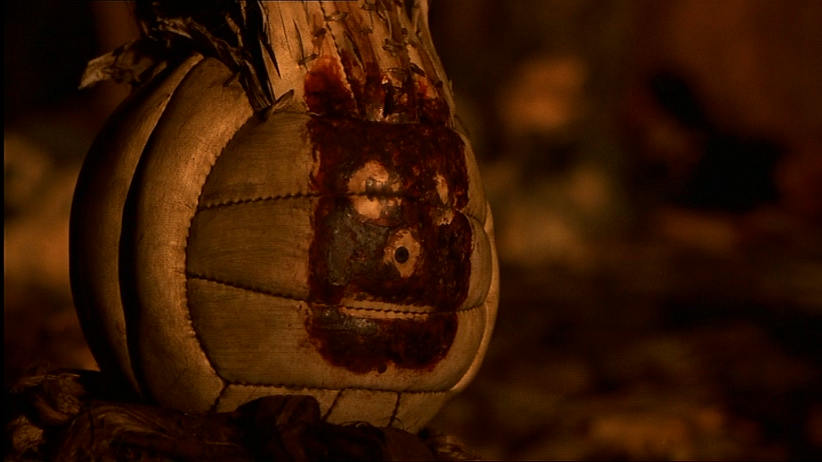 Wilson from Cast Away